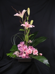 Picture of Pink Elegance