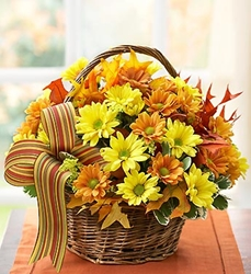 Picture of Fall Daisy Basket