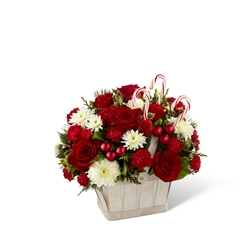 Picture of Candy Cane Lane Bouquet