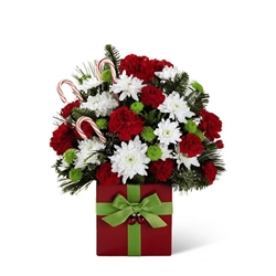Picture for category Holiday Flowers