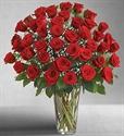 Picture of Three Dozen Roses