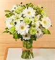 Picture of Green Serenity Bouquet